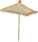 NLD Beach Umbrella Large.png