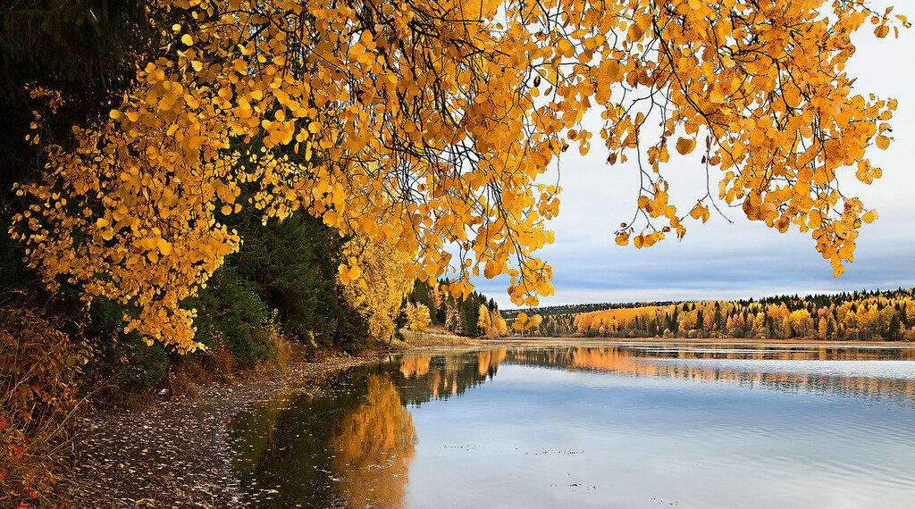 Осеннее дефиле