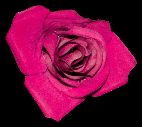 «Valentinas Creations_Roses Smell» 0_8f5e9_2384a0d0_L