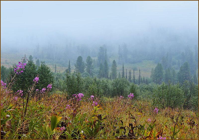 Долина под облаком
