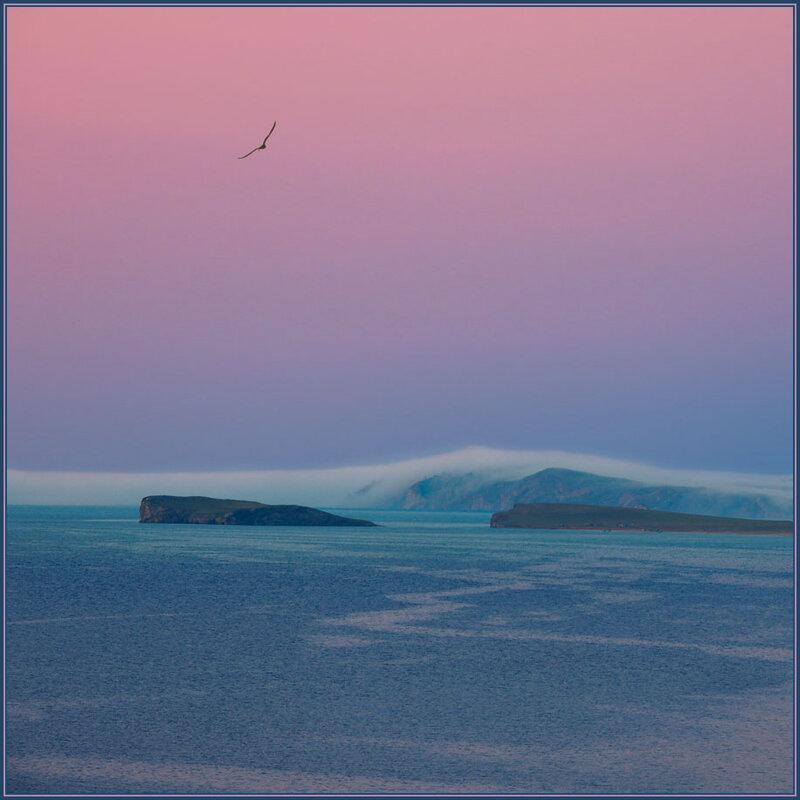 Туман наползает на берег