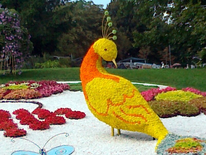 Жар-птица из цветов