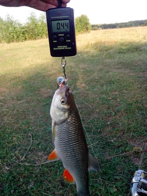 Новости с тегом «рыбалка»