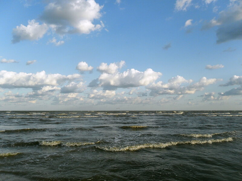 На берегах косы Ачуевской, август 2011