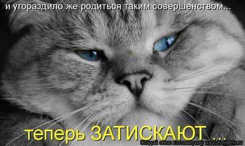 Звери в теме;) - Страница 4 0_bc418_2f993884_L