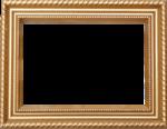 CR_ASTIC Frame 5 GoldWood.png