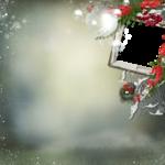 tiram_winter_story_QP3.png