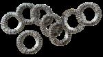 feli_btd_metal rings.png
