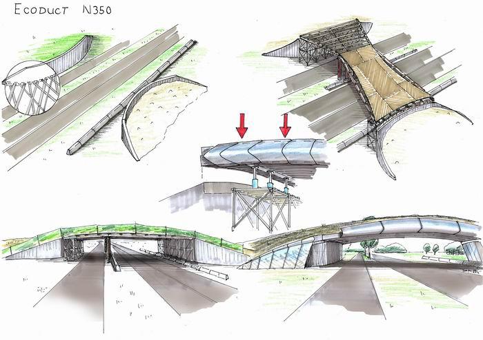 Экодуки - безопасные мосты для братьев наших меньших