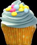 priss_Birthday_cupcake2.png