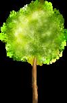 «Brigit_Flowery_Meadow» 0_8d493_2f04d8e6_S