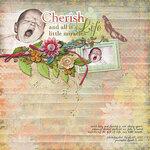 «Cherish_The_Day» 0_8e991_db005be4_S
