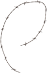 cvd inner storm barbed wire piece.png