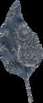 «CVD-Inner_Storm» 0_8f2bd_f65b4909_S