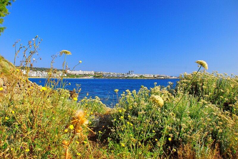 Вид на бухту Калифея