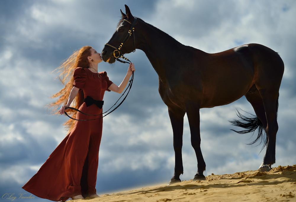 яндекс фото лошади 3