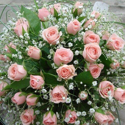 http://img-fotki.yandex.ru/get/6608/131884990.26/0_828cf_391908af_-1-L.jpg