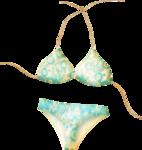 NLD Bikini.png