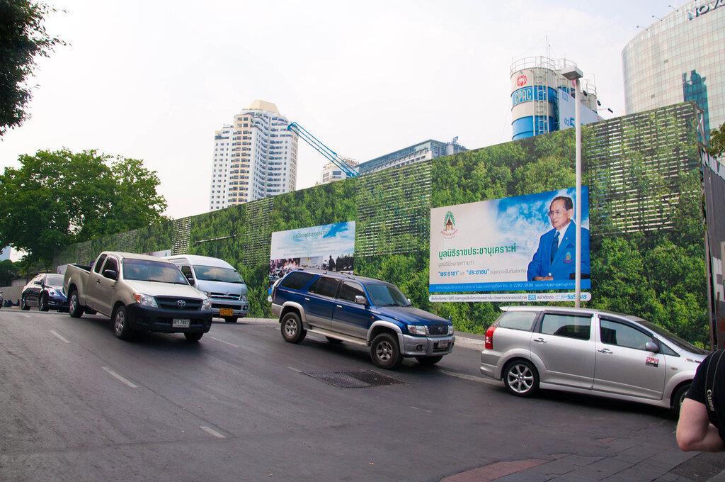 Тайланд, Бангкок, забор закрывающий стройку - с принтом зеленых насаждений
