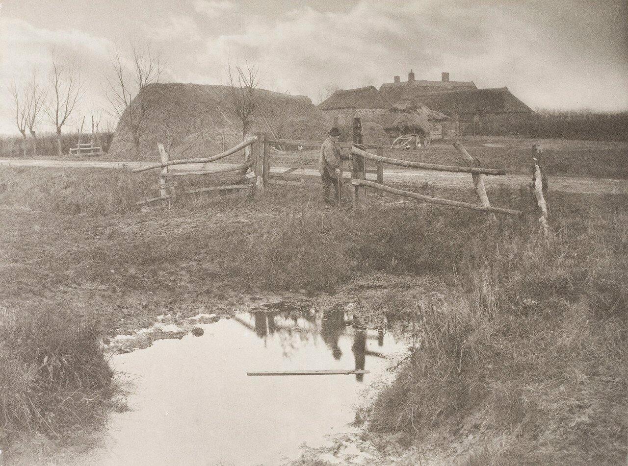05. Ферма на болотах