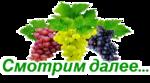 https://img-fotki.yandex.ru/get/6609/100773997.505/0_b9f18_c05a9cc9_S