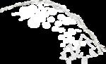 ldw_winterdelights_clusters2_overlay5.png