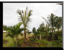 Маврикий.Sofitel So Mauritius Bel Ombre 5*