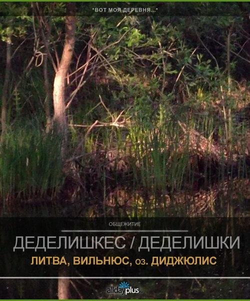 Литовская деревня. Болота...