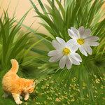 «Рыжий котенок» 0_8c686_7c538519_S