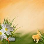 «Рыжий котенок» 0_8c687_f44de40a_S