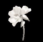 «Four Roses»  0_8ce15_1e264fec_S