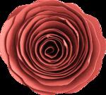 «Four Roses»  0_8ce1c_38bb8fe0_S