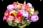 цветы (42).png