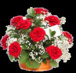 цветы (132).png