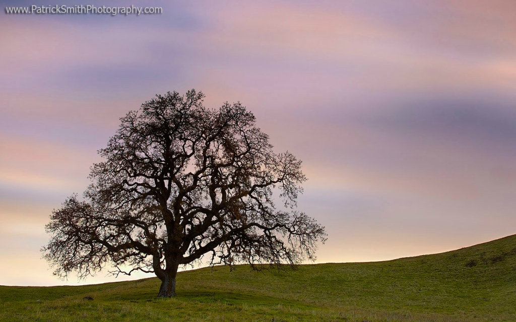 Пейзажи фотографа Патрика Смита (Patrick Smith)