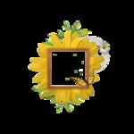 goldensun_sunnyday_cluster 5.png