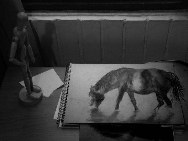 Карандашные 3d рисунки от молодого