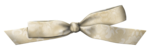 jeand_weddingdiary_bow1.png