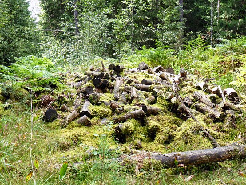 чем дальше в лес - тем больше дров :(