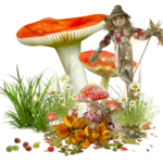 mushroom 14.png
