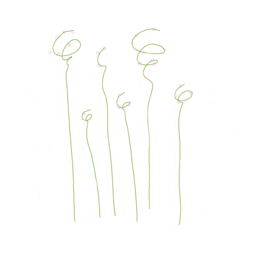 «Marta_FloweringCherries» 0_902a0_f118b52f_L