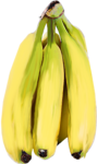 «kimla_Spring_Cooking»  0_9103f_26cffc88_S