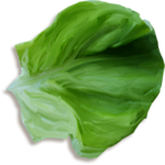 «kimla_Spring_Cooking»  0_91080_1880ca86_S