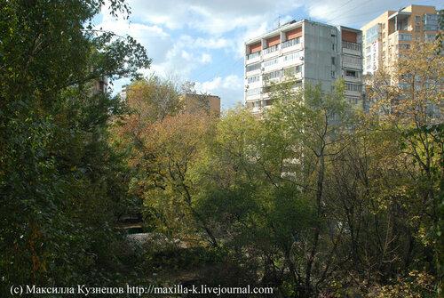 осень из окна