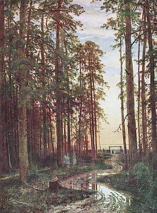 Вечер в сосновом лесу.1875 г. И.И. Шишкин.jpg