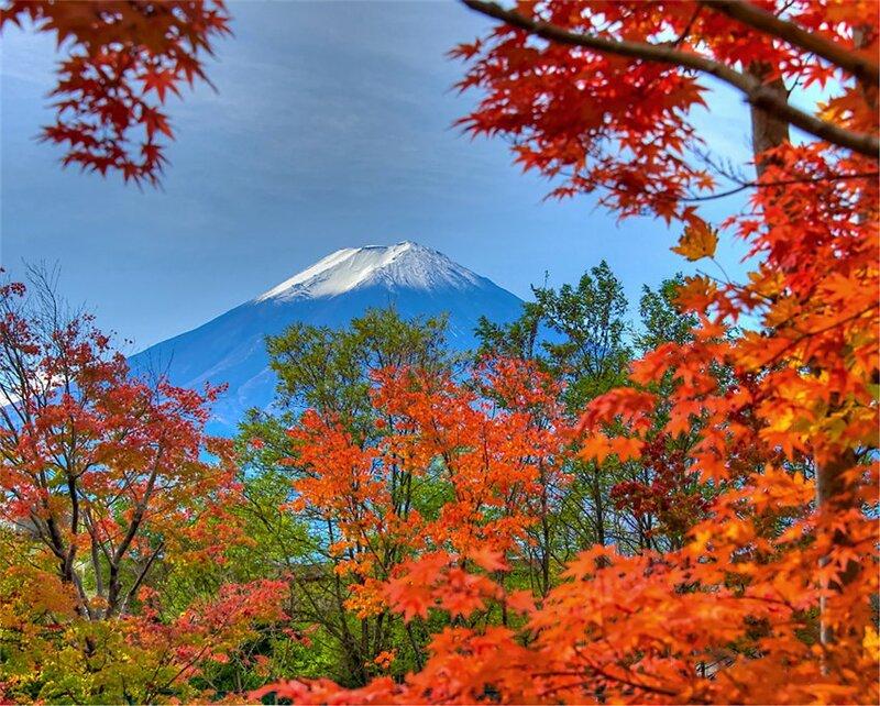 Осень в японии известна своим