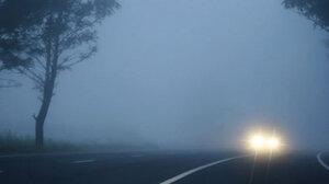 Причиной ДТП на севере Молдовы стал сильный туман на дороге