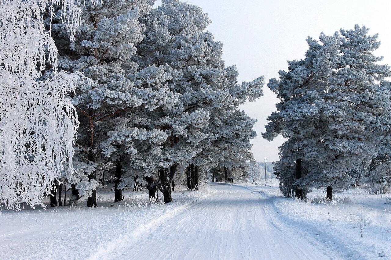 места зимой Куда пойти в Москве зимой? 0 ae323 cfe75e27 XXXL