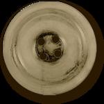 nbeaudreau_heirloomgarden_button1_sh.png