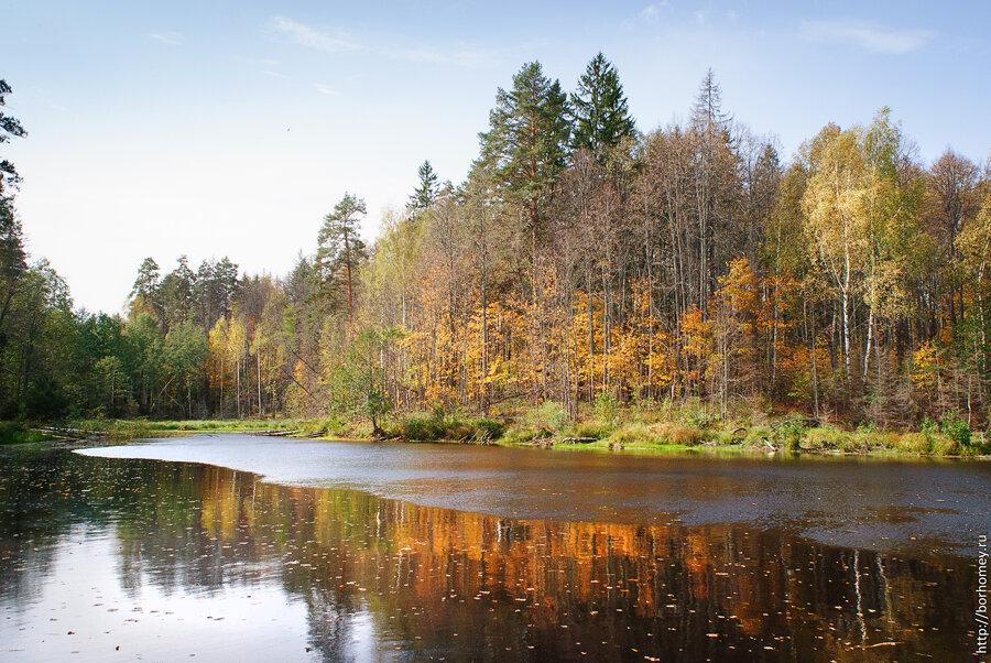 гадово озеро осенью